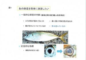 鮮魚センサー資料_ページ2
